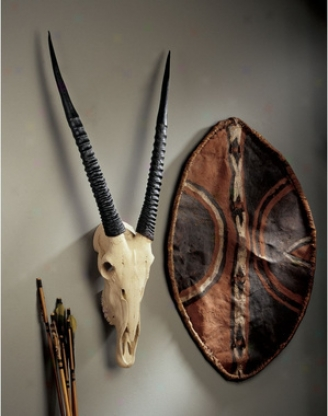 Gemsbok African Wall Trophy