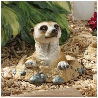 Kalahari Meerkat Statue: Out Of Hole