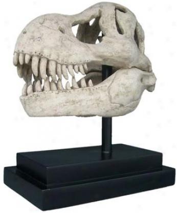 T-rex Dinosaur Skull Foossil Statue On Museum Mount