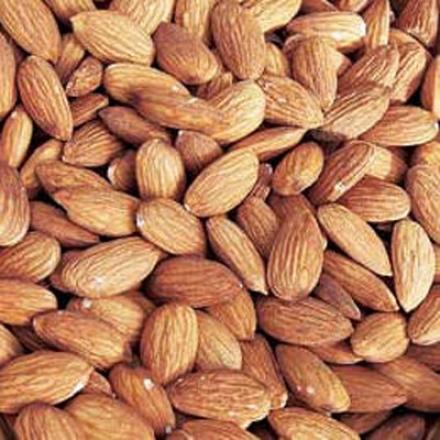 Almond Nut Tree