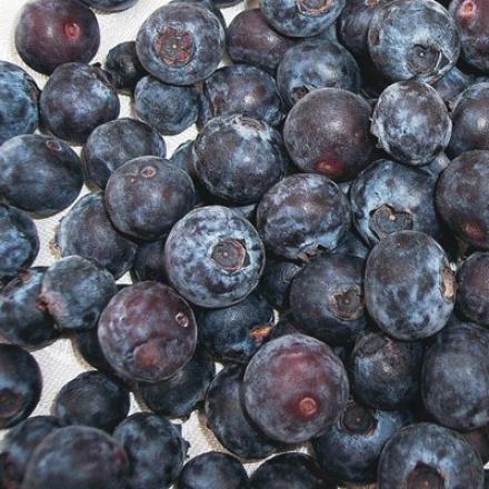 Blueberry, Rubel
