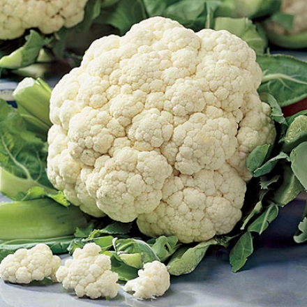 Cauliflower, Snowball