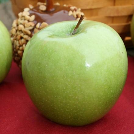 Dwarf Granny Smith Apple