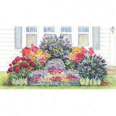Garden, Fragrant