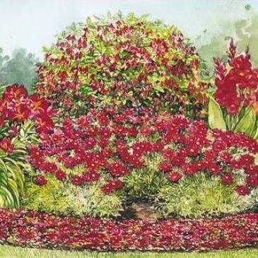 Garden, Perennial Sun Collection In Red