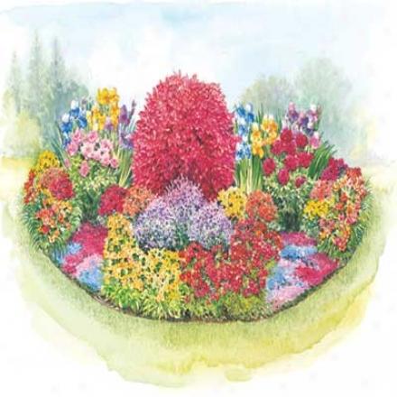 Garden, Three Seasons