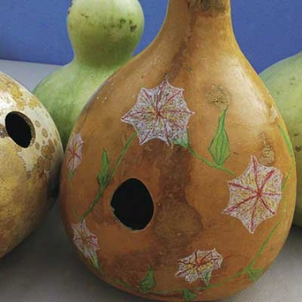 Gourds, Bird House Pkt