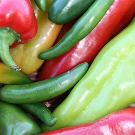 Pepper Mix, Hot