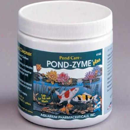 Pond-zyme Plus