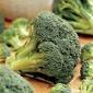 Broccoli, Packman Hybrid