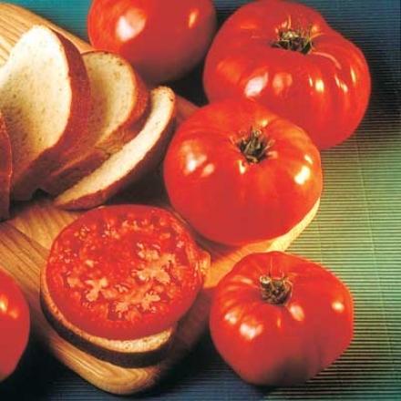 Tomato, Delicious
