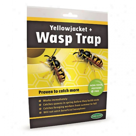 Trap, Wasp Bag