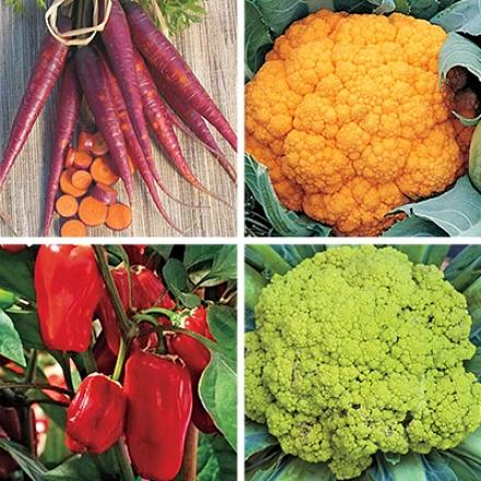 Veggie Colleftion, Vitamin