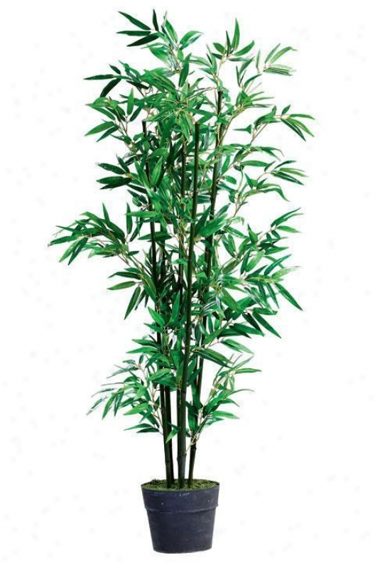 84 Inch High Bamboo Topiary In A Tin Base