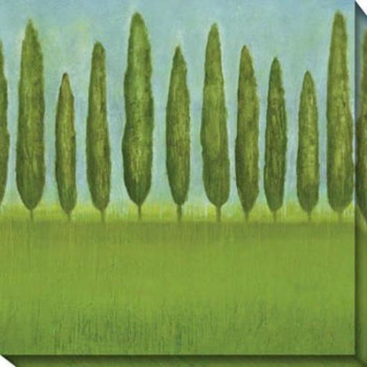 Afternoon Delight Ii Cajvas Wall Art - Ii, Green