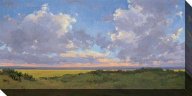 """afternoon Skies Canvas Wall Art - 48""""hx90, Green"""