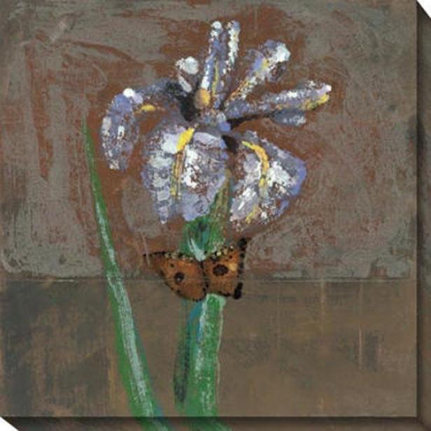 """""""amaryliss Canvas Wall Art - 40""""""""hx40""""""""w, Gray/multi"""""""