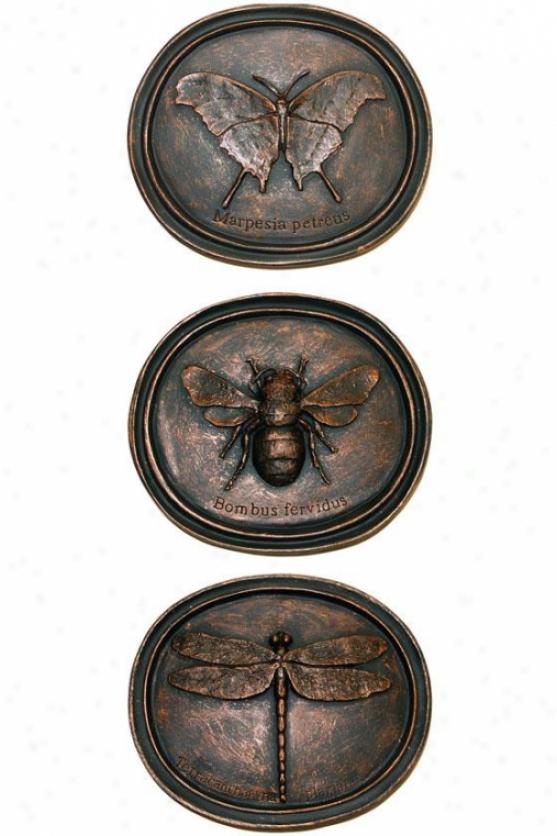 Anthropology Plaques - Set Of 3 - Set Of Three, Bronze