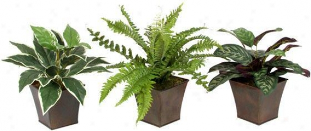 Assorted Foliage In Metal Planter - Set Of 3 - Set Of 3, Green