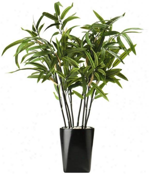 """bamboo In Cerramic Mug - 5.5""""dx 26""""h, Green"""