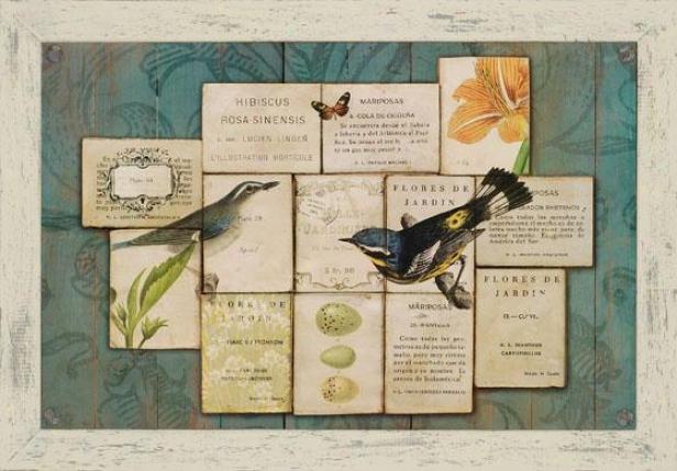 """""""birds Of The Garden Framed aWll Art - 29h X 41w X 1""""d"""", Aqua Blue"""""""