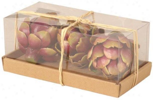 Box Of Artichokes - 3 Piece, Burgundy