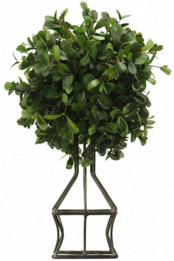 """boxwood Topiary - Ball-shaped: 49h X 18""""rdx, Green"""