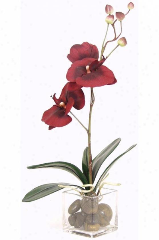 """burguny Orchid Floral Arrangenent - 15""""hx12""""d, Red"""