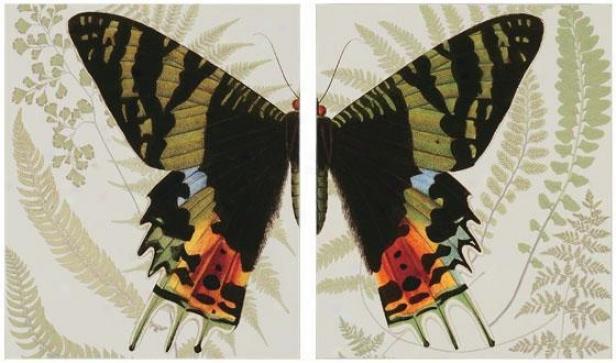 """""""butterfly Proportion - Set Of 2 - 24""""""""hx20""""""""w, Purple"""""""