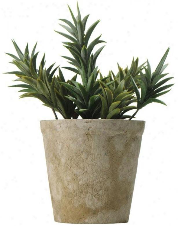 """cacti In Paper Mache Pot - 11h X5""""round, Green"""