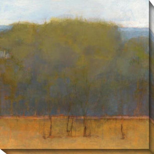 Change Of Seasons Ii Canvas Wall Art - Ii , Green