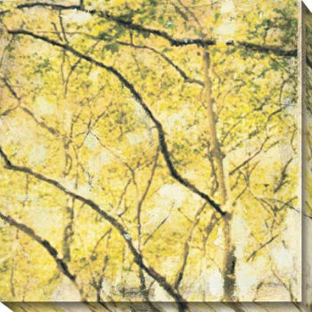 """city Park Ii Canvas Wall Art - 40""""hx40""""w, Yellow"""