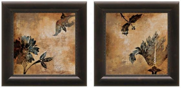 Coromandel Frsmed Walll Art - Set Of 2 - Set Of Two, Brown