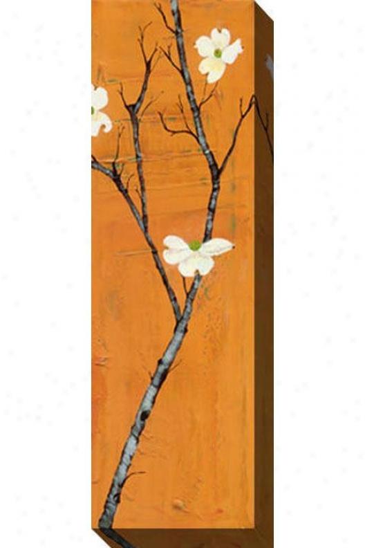 """dogwood On Orange Canvas Wall Art - 48""""hx16""""w, Orange"""