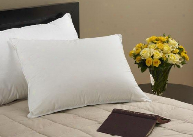 Down Collection Alterrnative Pillow - Standard, White