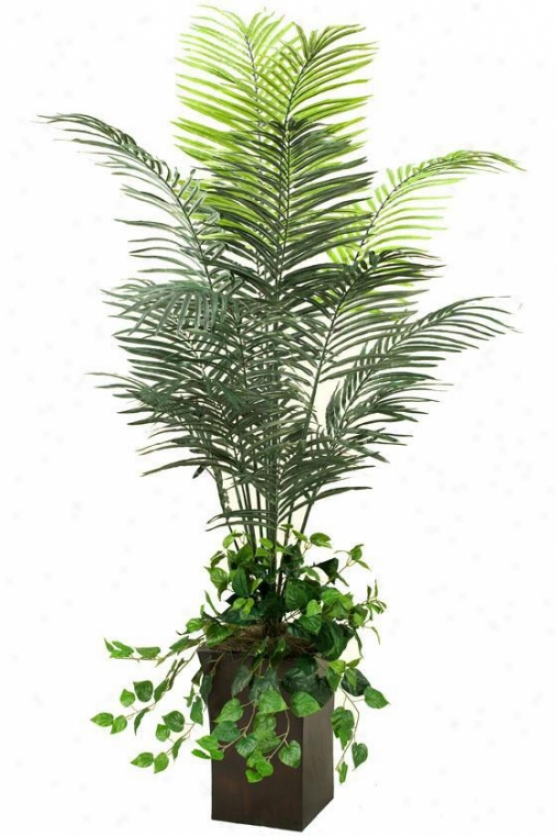 """dwarf Arceca Palm In Square Metal Planter - 74""""h, Green"""