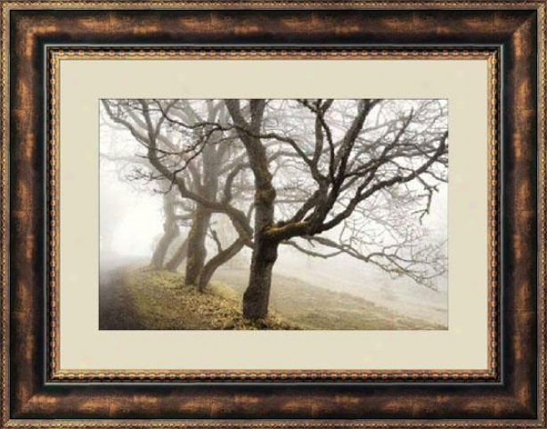 """early Morning Calm Framed Wall Art - 28""""hx36""""w, Brown"""