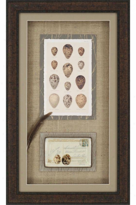 Egg Collage Frameed Wall Art - Set Of 2 - Set Of Two, Tan