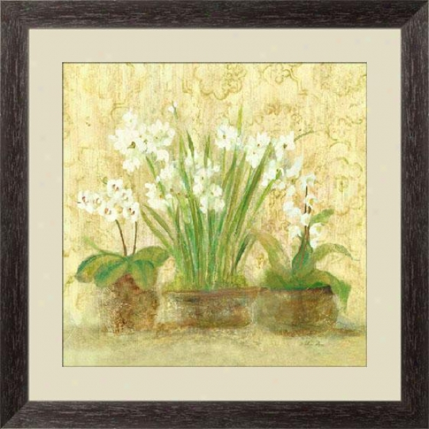 """esprit Narcissus And Orchid Framed Wall Art - 27""""hx27""""w, Esprso Cube Frm"""