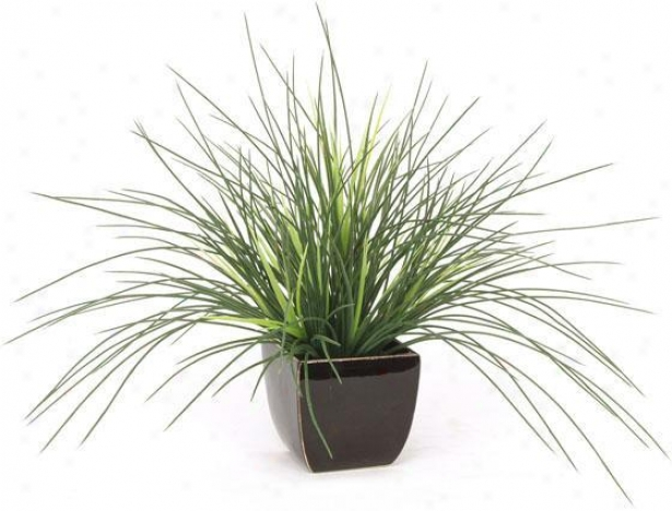 """expo Crane Grass - 17""""hx20""""d, Green"""