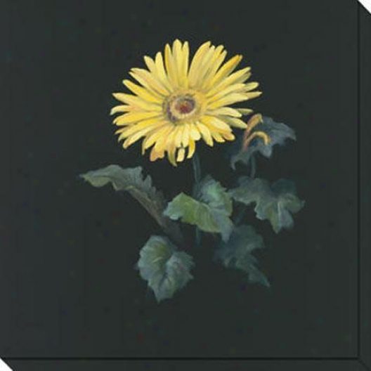 Floral Suite I Canvas Wall Art - I, Black