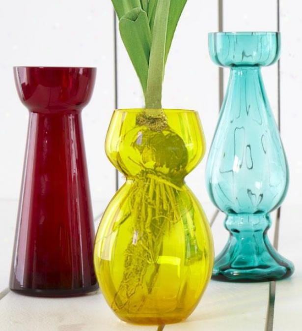 Floresta Bulb Vases - Set Of 3 - Set Of Three, Multi