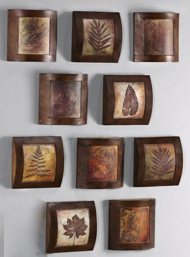 Fossil Collage Wooden Wall Art
