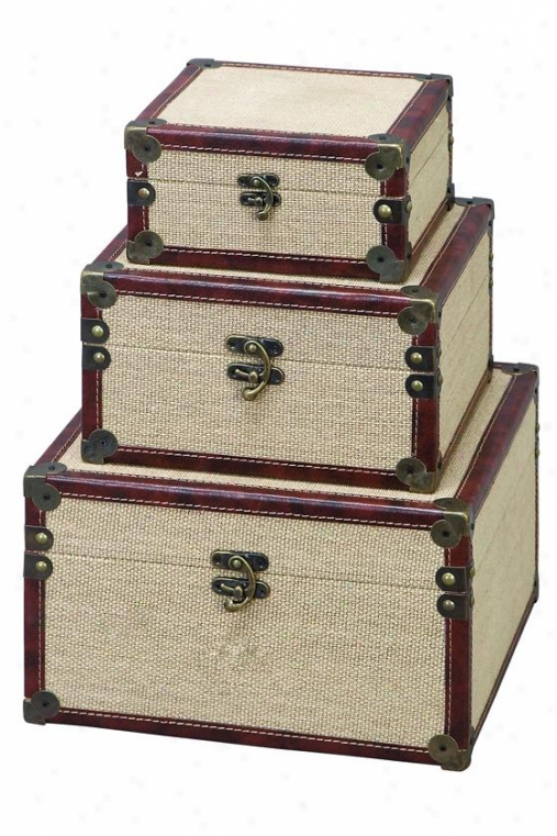 Gavin Box - Prescribe Of 3 - Set Of Three, Canvas