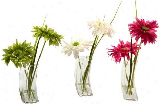 """""""gerber Daisies In Glass Put in a ~ - Set Of 3 - 13.5""""""""hx4.5""""""""w, Pink/grn/white"""""""