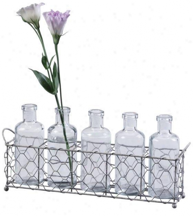 Glass Bottles And Wire Small trough Set - 12.75x2.5, Silver/clear