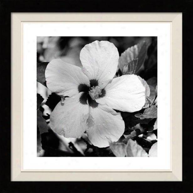 """glory Framed Wall Art - 32""""hx32""""w, Floated Black"""