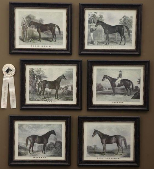 Grand Champion Wall Prints - Set Of 6 - Set Of Six, Black