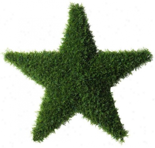"""grass Star - 24h X 25.5""""w, Green"""