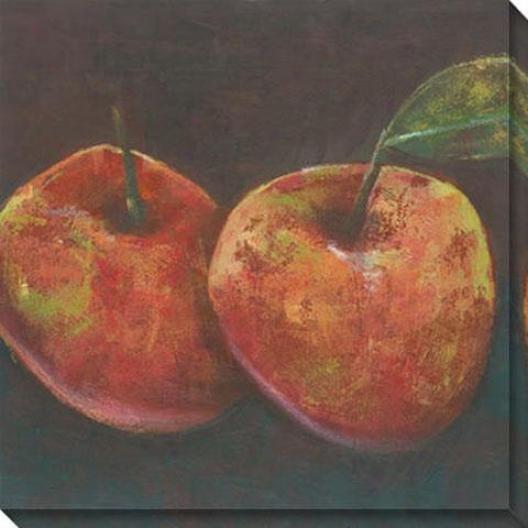 """juniper Pomme Canvas Wall rAt - 40""""hx40""""w, Orange"""